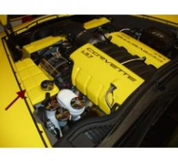 Corvette Surge Tank Cover, Painted, Atomic Orange, 2007-2009