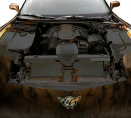 American Car Craft Chevrolet Corvette 1997-2004  Inner Fender Liners Polished 4pc w/Illum. Top Caps Green LED 033028-GRNL